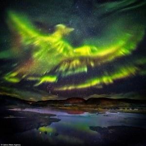 Feniks nad Islandią - świt Bogów.