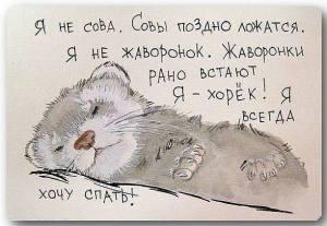 nie-jestem-sowa-bo-sowy-noca-lataja-nie-jestem-skowronkiem-bo-skowronki-rano-wstaja-jestem-lasiczka-ja-wole-spac